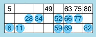 how to play bingo two lines