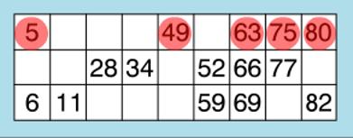 Bingo Liner Winner